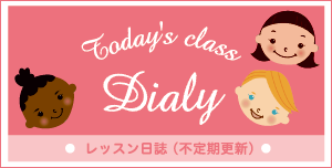 lesson diary